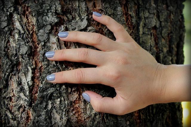 ruka na stromě