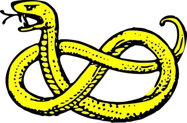 zamotaný had